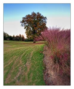 Ninth Hole Stoney Point Golf Course Greenwood, South Carolina.
