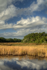 Beautiful landscape scenery during the driving tour around Botany Bay Plantation Heritage Preserve and Wildlife Management Area in Edisto Beach, SC on Friday, August 29, 2014. Copyright 2014 Jason Barnette