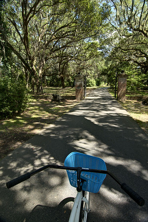 View during a bicycle ride along the History Trail at Charles Towne Landing State Historic Park in Charleston, SC on Wednesday, September 3, 2014. Copyright 2014 Jason Barnette