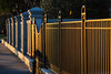 Golden Battery Fence