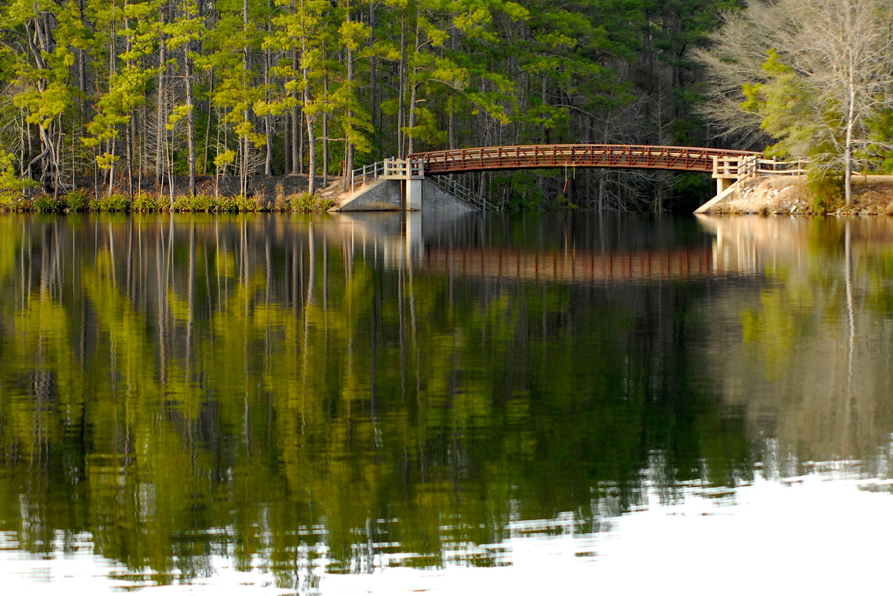 A footbridge crosses a damn at the end of Juniper Lake, part of the Boardwalk Trail, in Cheraw State Park, a 7,300-acre park featuring camping, hiking, golf, and a beautiful lake, in Cheraw, South Carolina on Friday, March 4, 2011. Photo Copyright 2011 Jason Barnette