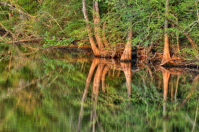 Warm sunset colors and the still waters of the Waccamaw River create beautiful reflections near the Riverwalk in Conway, SC on Wednesday, April 8, 2015. Copyright 2015 Jason Barnette