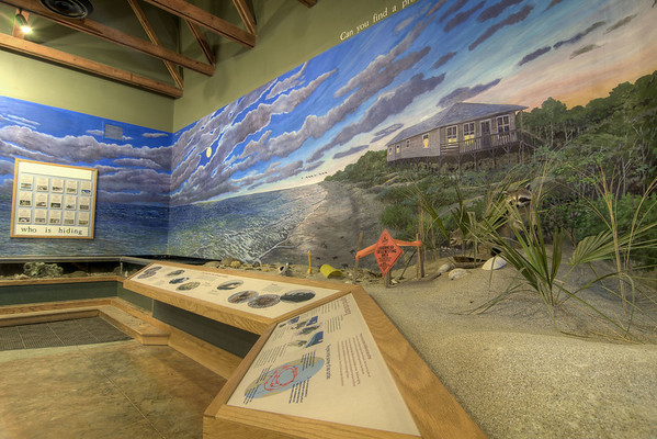 A large display at the Environmental Learning Center in Edisto Beach State Park in Edisto Beach, SC on Friday, August 29, 2014. Copyright 2014 Jason Barnette