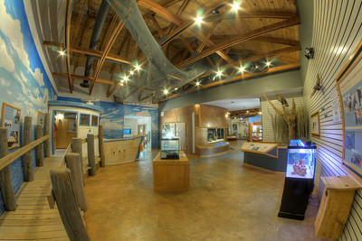 The Environmental Learning Center in Edisto Beach State Park in Edisto Beach, SC on Friday, August 29, 2014. Copyright 2014 Jason Barnette