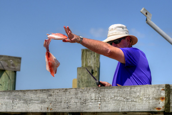 A man cleans the fish he caught during a trip with Edisto Watersports in Edisto Beach, SC on Friday, August 29, 2014. Copyright 2014 Jason Barnette