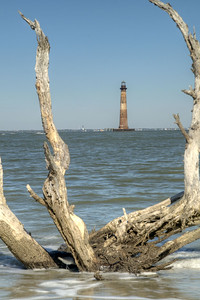 The Morris Island Lighthouse seen in the middle of a deadwood tree on Folly Beach, SC on Thursday, November 28, 2013. Copyright 2013 Jason Barnette  In 1873 the Congress approved funds to build the Morris Island Lighthouse, completed in 1876. During the end of the 1800's the channel leading into Charleston Harbor began to shift (for the second time), threatening traffic leading to the port city. A series of jetties were built along Folly Island which saved the channel, but had the side affect of eroding Morris Island. Since 1938 over 1600 feet surrounding the lighthouse has been lost. The Morris Island Lighthouse Project is an effort to preserve and restore the lighthouse.