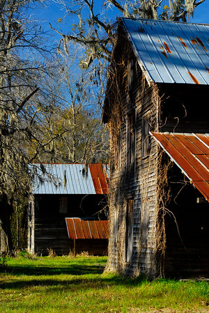 These two pack houses, both circa 1915, were used for storing tobacco part of the year and corn and other grains the rest of the year, both located along Pee Dee Road in Galivants Ferry, South Carolina on Monday, February 14, 2011. Photo Copyright 2011 Jason Barnette