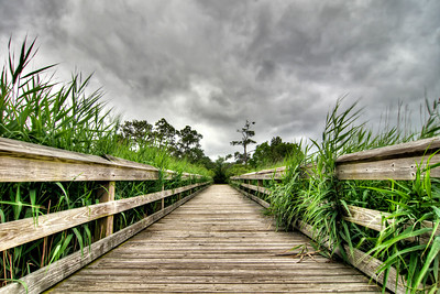 Tall grasses surround a wooden footbridge at Morgan Park in Georgetown, SC on Sunday, May 29, 2016. Copyright 2016 Jason Barnette