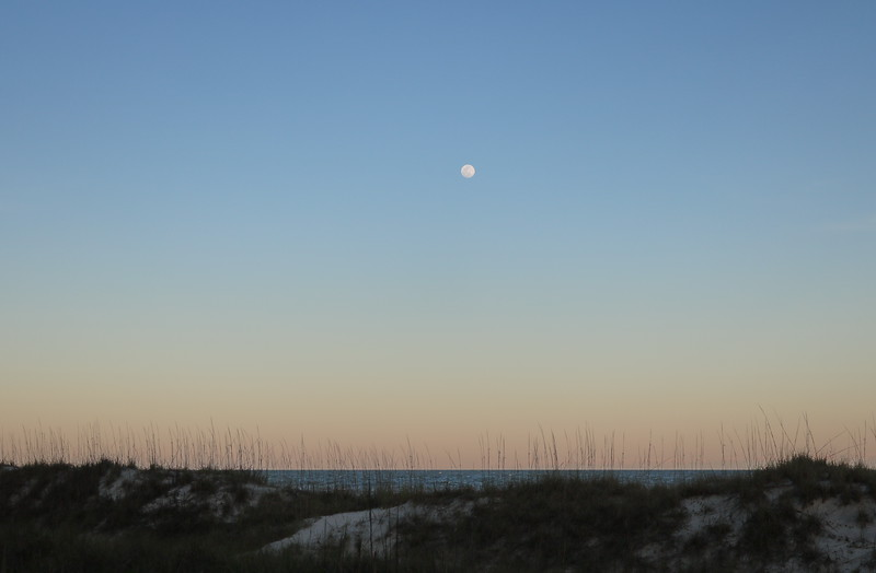 Moonrise over Coligny Beach