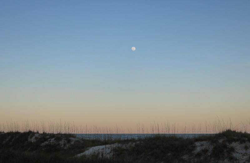 Moonrise over Coligny Beach