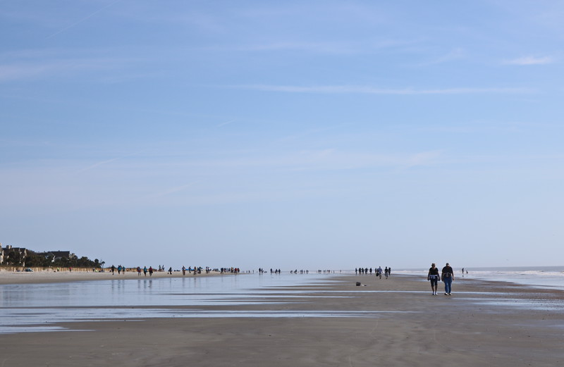 Low Tide in the Morning