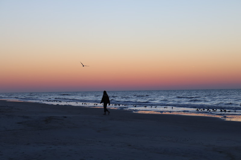 A Walk on the Beach at Dawn