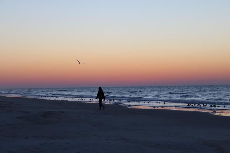 A Walk on the Beach at Dawn