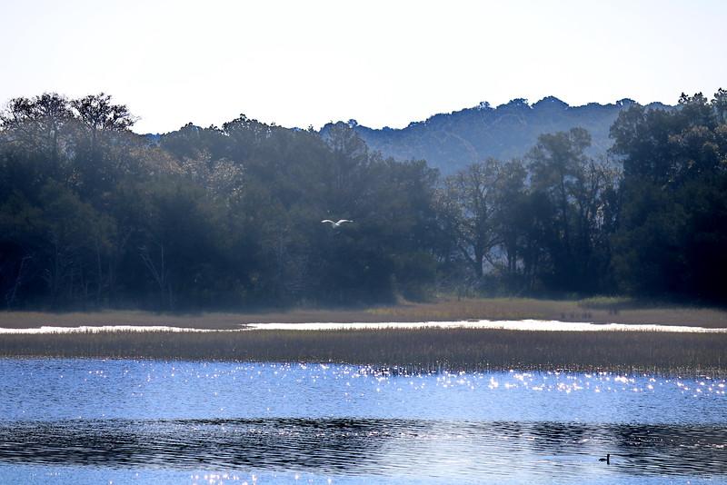 Intracoastal Waterway 2