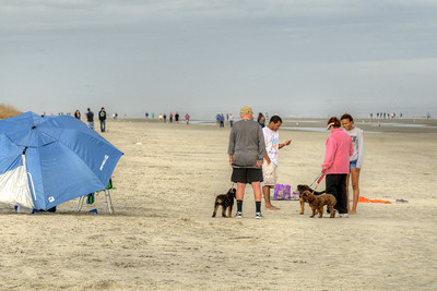 Lots of people enjoy a warm winter day on the beach in Hilton Head Island, SC on Sunday, February 22, 2015. Copyright 2015 Jason Barnette