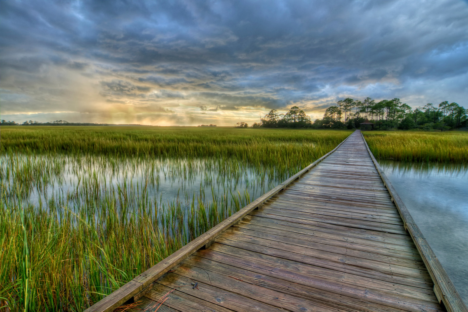 Marsh Boardwalk at Hunting Island State Park