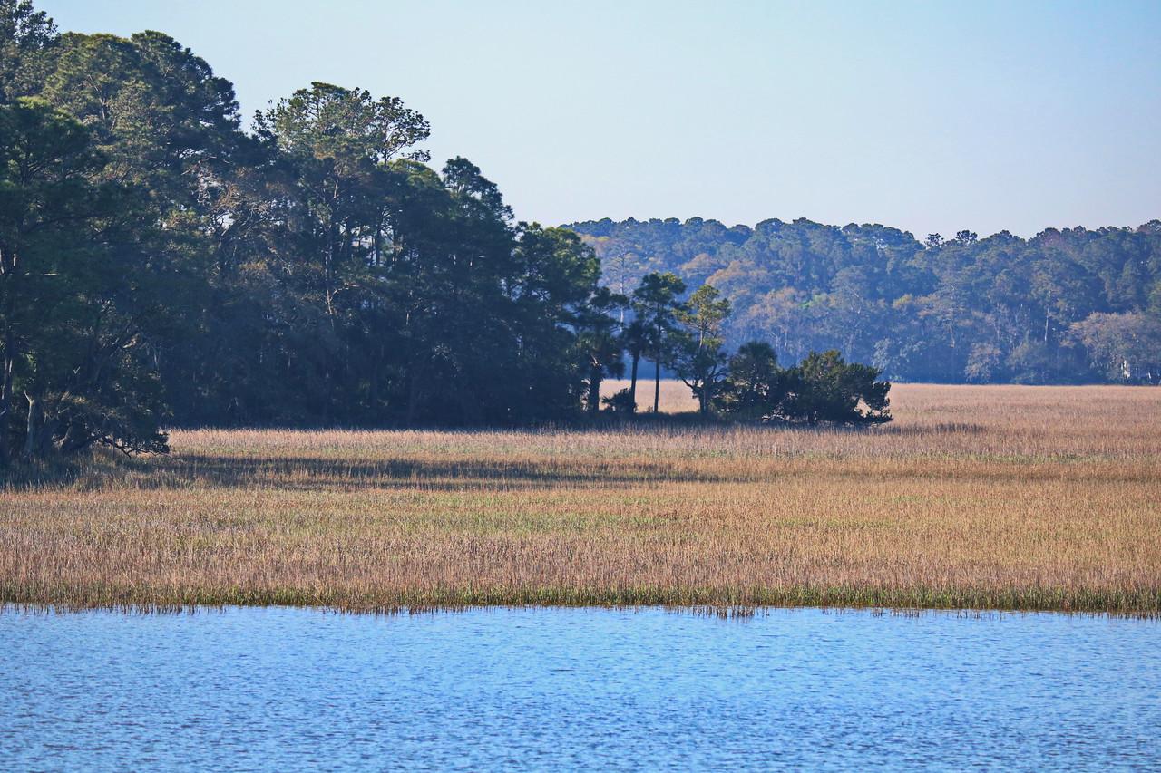 Salt Marsh along the Intracoastal Waterway