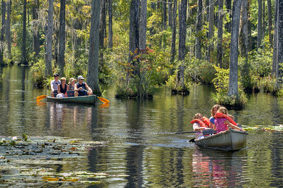 People enjoy self-guided boat tours of the marshes at Cypress Gardens in Moncks Corner, SC on Saturday, September 7, 2013. Copyright 2013 Jason Barnette