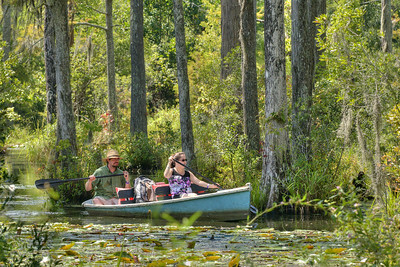 A couple take a boat tour of the marshes at Cypress Gardens in Moncks Corner, SC on Saturday, September 7, 2013. Copyright 2013 Jason Barnette