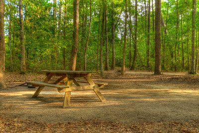 A pair of campground lots at Myrtle Beach State Park in Myrtle Beach, SC on Saturday, April 14, 2012. Copyright 2012 Jason Barnette