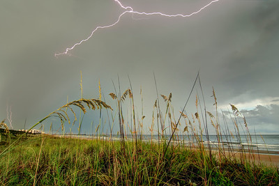 at Myrtle Beach State Park