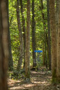 Heavily wooden area surrounding the basket at Hole #4 at the Socastee Recreation Park Disc Golf Course in Myrtle Beach, SC on Wednesday, April 22, 2015. Copyright 2015 Jason Barnette  This disc golf course is 18-holes of fun at a small, secluded community park. The first nine holes wind through a dense coastal forest of towering pine trees, while the back nine practically float in a watery swamp.