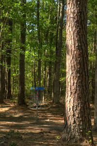 The basket at Hole #3 at the Socastee Recreation Park Disc Golf Course in Myrtle Beach, SC on Wednesday, April 22, 2015. Copyright 2015 Jason Barnette  This disc golf course is 18-holes of fun at a small, secluded community park. The first nine holes wind through a dense coastal forest of towering pine trees, while the back nine practically float in a watery swamp.