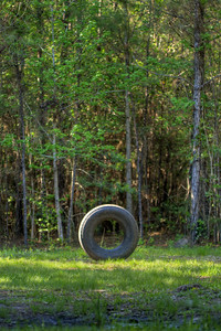 Sometimes large objects, such as this massive tire, are used to mark sharp turns along the fairways, this one on Hole #12 at the Socastee Recreation Park Disc Golf Course in Myrtle Beach, SC on Wednesday, April 22, 2015. Copyright 2015 Jason Barnette  This disc golf course is 18-holes of fun at a small, secluded community park. The first nine holes wind through a dense coastal forest of towering pine trees, while the back nine practically float in a watery swamp.