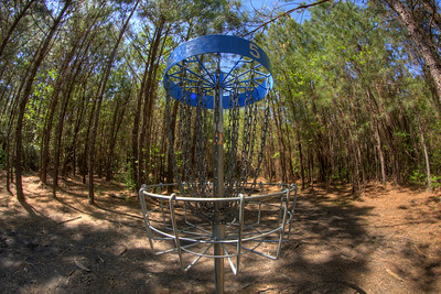 Wooded area surrounding the basket at Hole #5 at the Socastee Recreation Park Disc Golf Course in Myrtle Beach, SC on Friday, April 24, 2015. Copyright 2015 Jason Barnette  This disc golf course is 18-holes of fun at a small, secluded community park. The first nine holes wind through a dense coastal forest of towering pine trees, while the back nine practically float in a watery swamp.