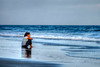 A woman sits in the waves in the late evening in North Myrtle Beach, SC on Friday, October 5, 2012. Copyright 2012 Jason Barnette