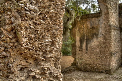 Oyster shells protrude as part of the walls at the Chapel of Ease Ruins in Saint Helena Island, SC on Sunday, February 22, 2015. Copyright 2015 Jason Barnette  The chapel was building in the mid-1700's to serve the families of plantation owners on Saint Helena Island. In 1886 a forest fire destroyed the church, leaving only the walls and a single pillar standing.   Today the grounds are maintained by Parish Church of St. Helena. The ruins are open to the public 24/7 for respectful exploration, and permits can be acquired for photo shoots and weddings.