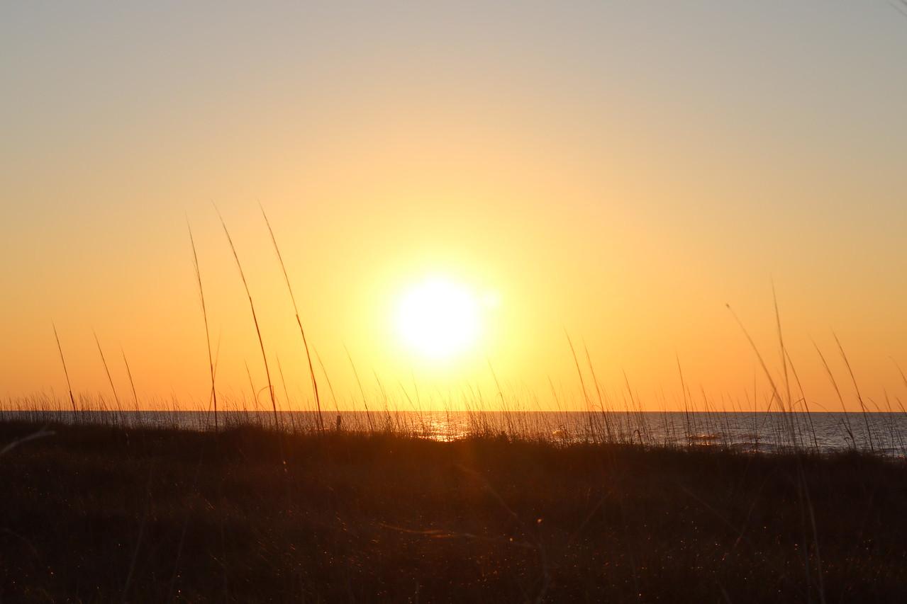 Sunrise 33