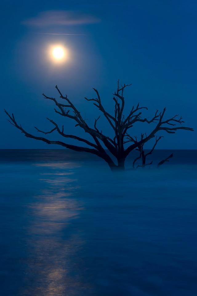 Full Moon Botany Bay