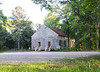 Horn Creek Baptist Church, Edgefield