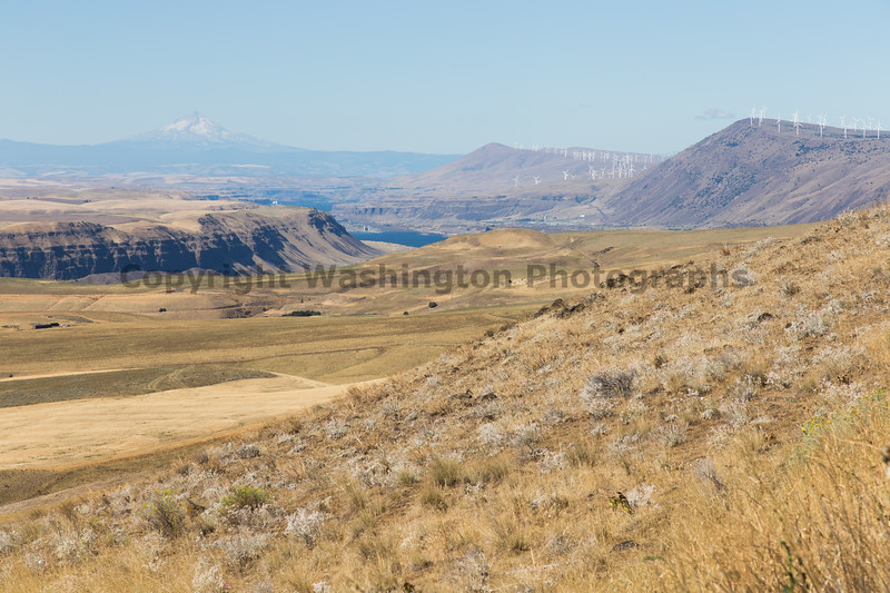 Columbia River Viewpoint 57