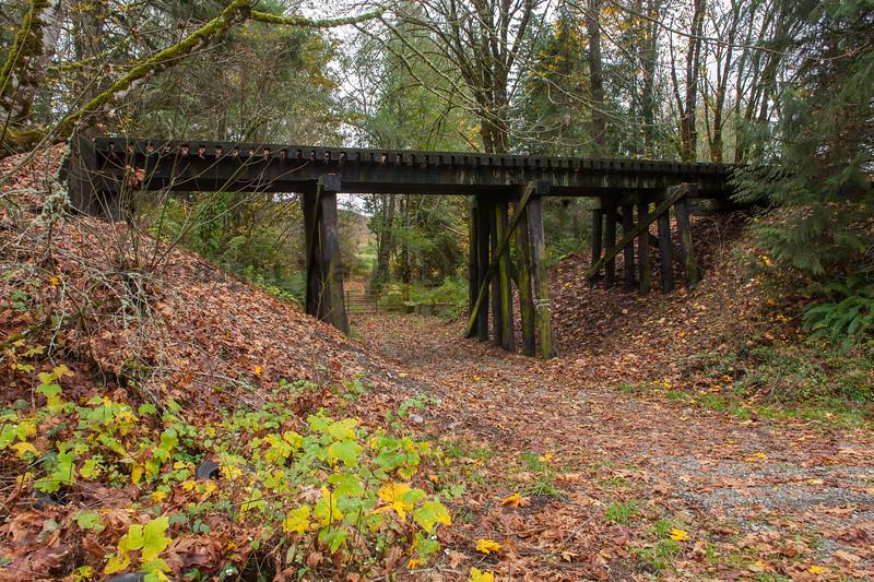 Railroad Tracks in Autumn 13