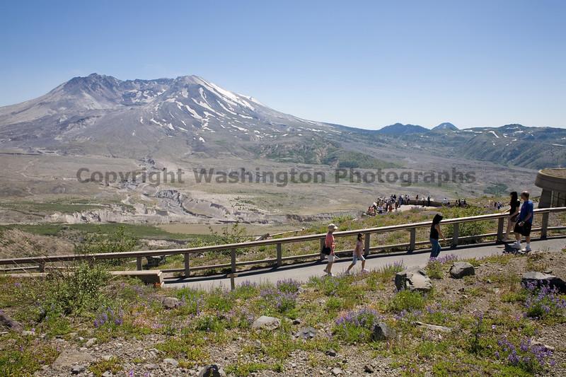 Mt St Helens Johnston Ridge Trail 151
