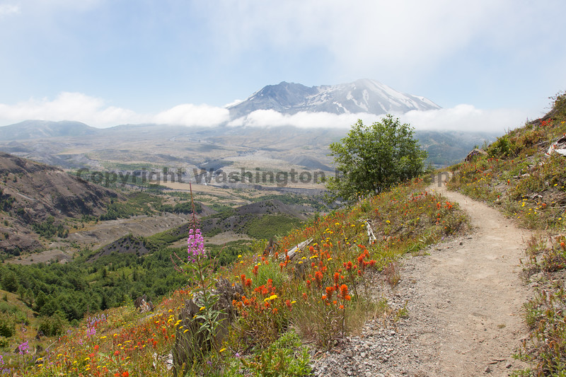 Mt St Helens Johnston Ridge 171