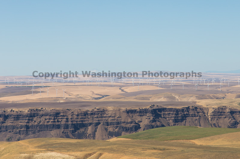 Columbia River Viewpoint 58