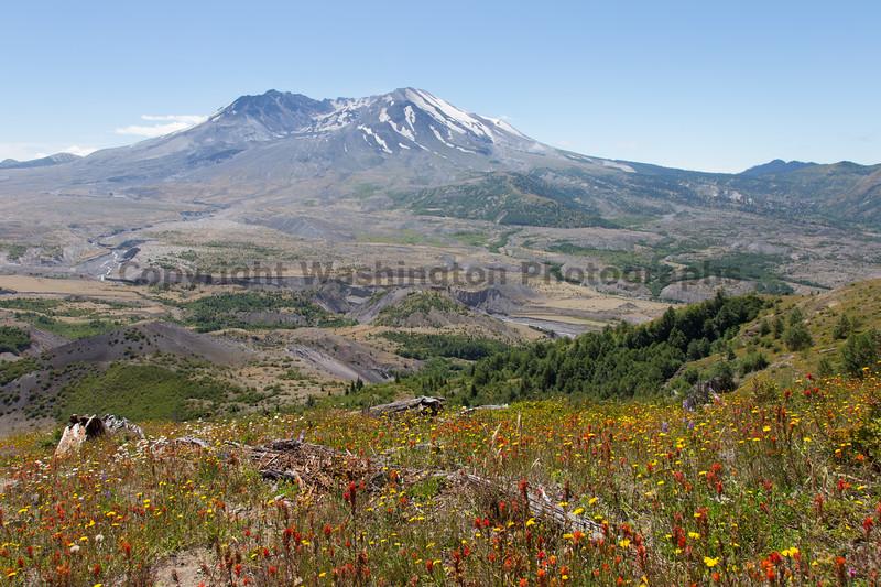 Mt St Helens Johnston Ridge 191