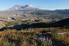 Mt St Helens Johnston Ridge 231