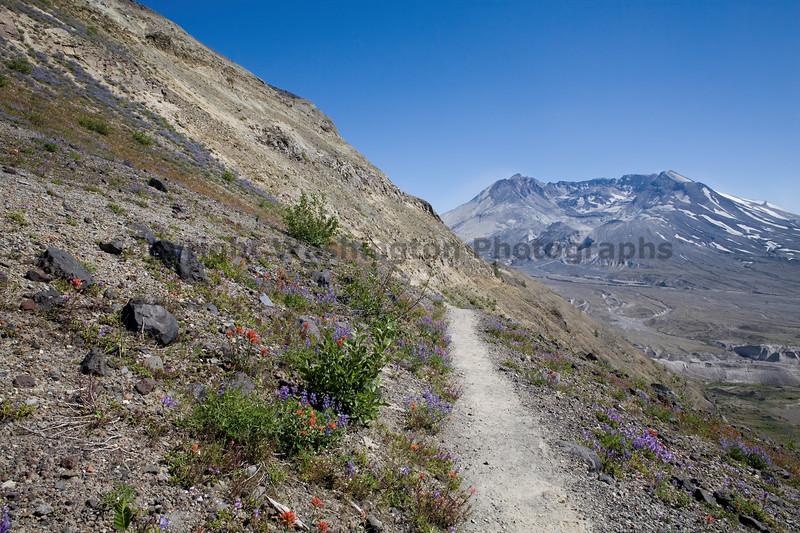 Mt St Helens Johnston Ridge 142