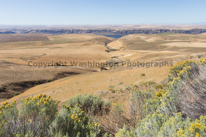 Columbia River Viewpoint 56