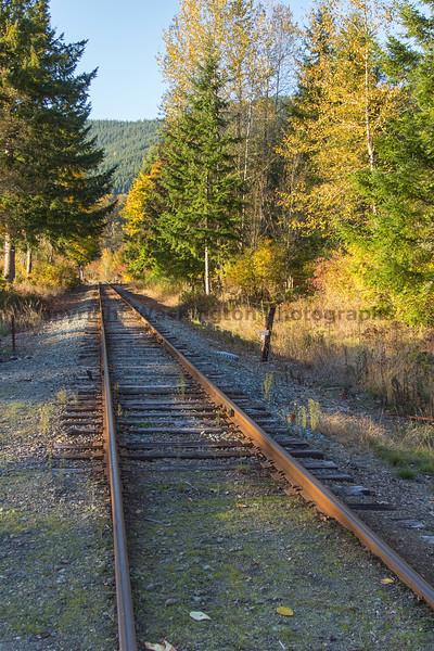 Railroad Tracks in Autumn 21