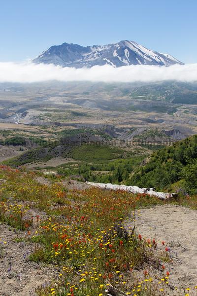 Mt St Helens Johnston Ridge 164
