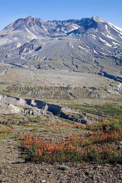 Mt St Helens Johnston Ridge 130