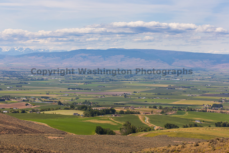 Kittitas Valley 11