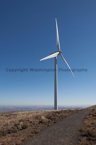 Wind Farm 42