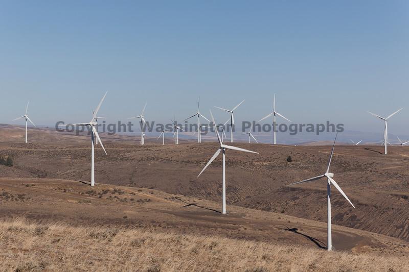 Wind Farm 44