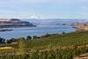 Columbia River Gorge Dallesport 35